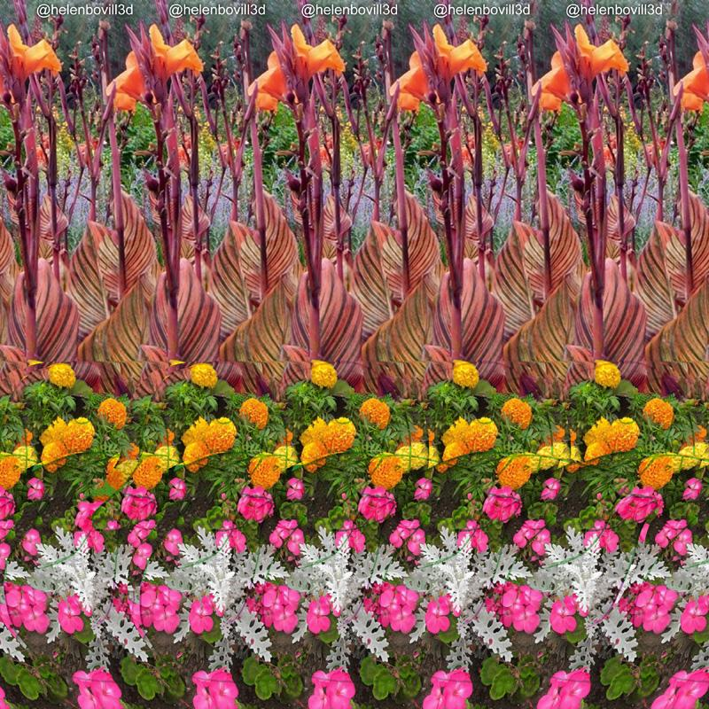 Stereogram by 3Dimka: @helenbovill3d. Tags: duck, hidden 3D picture (SIRDS)