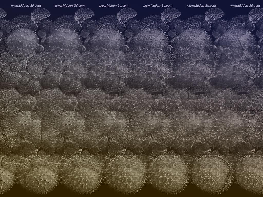 Stereogram by 3Dimka: SEM stereogram. Tags: SEM, microscope, hidden 3D picture (SIRDS)