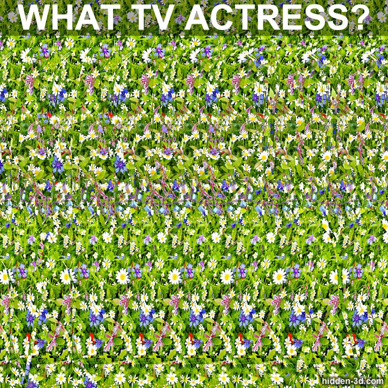 Stereogram by 3Dimka: Guess the TV actress. Tags: puzzle movie trivia ncis Pauley Perrette, hidden 3D picture (SIRDS)